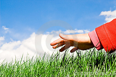 Hand upon the grass