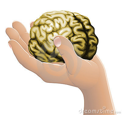 Hand holding a brain