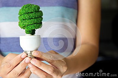 Hand holding eco light bulb