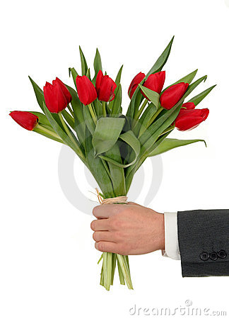 Free Hand Holding Flowers Stock Photos - 458653