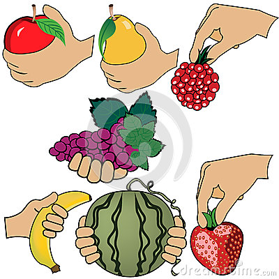 Hand is holding fruit
