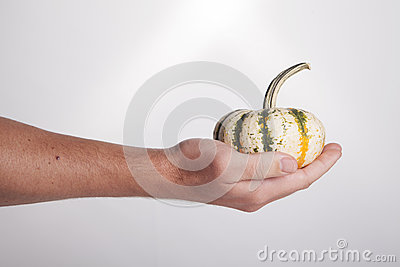 Hand Holding Gourd