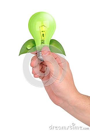 Hand Holding Green Energy Lightbulb