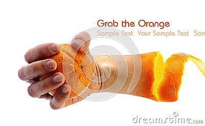 Hand holding an orange