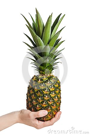 Hand holding pineapple fruit
