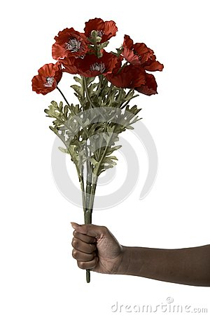 Hand holding a red bouquet