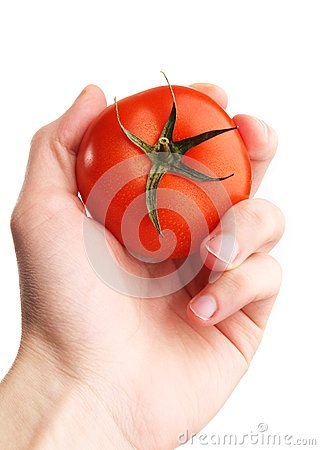Hand holding tomato. selection