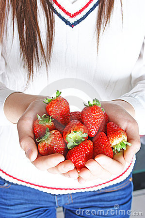 Hand holds many strawberries