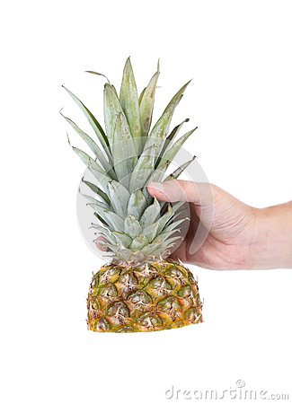 Hand holds top of the pineapple