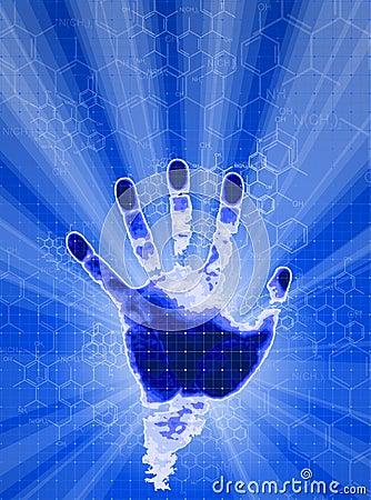 Hand identification