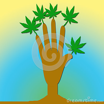 A hand with leaves. Stock Photo