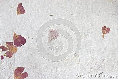 Hand made paper - petals