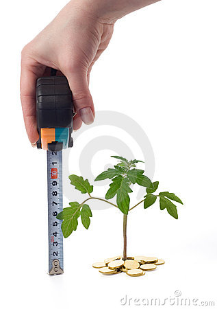 Free Hand Measures Plant Growth Royalty Free Stock Photography - 2198947