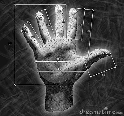 Hand with overall dimensions