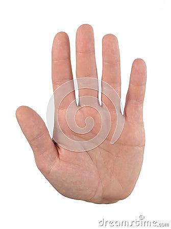 Hand palm