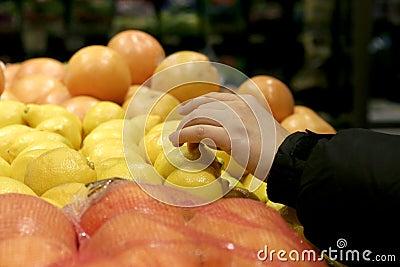 Hand picking lemon