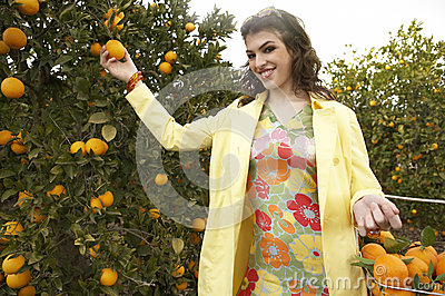 Hand Picking Orange