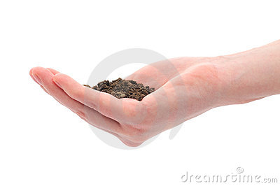 Hand and pile of black dirt