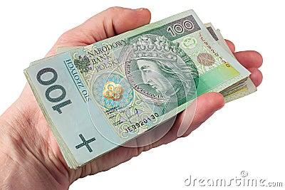 Hand with polish money