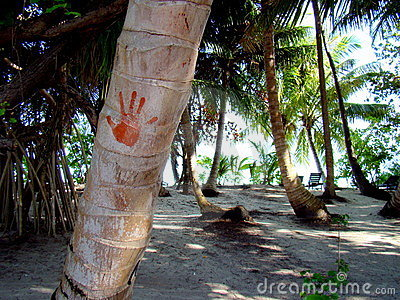 Hand-print on a palm tree at the Maldives