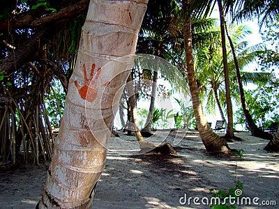 Hand-print on a palm tree at the Maldives