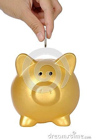 Hand Put Coin Into Piggy Bank