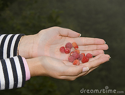 Hand with raspberries
