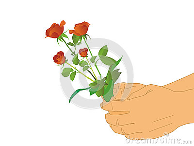 Hand and red flower on isolated white background