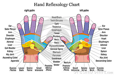 Communication on this topic: How to Read an Ear Reflexology Chart, how-to-read-an-ear-reflexology-chart/