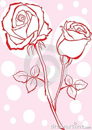 Hand sketched rose.