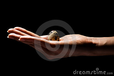 Hand with small egg in hand