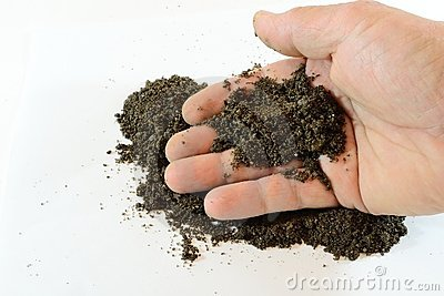 Hand with soil