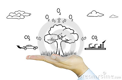 Hand with tree decrease global warming, photosynthesis