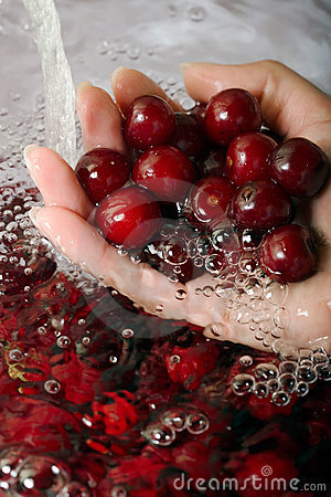Free Hand With Sour Cherries Royalty Free Stock Photography - 2785547