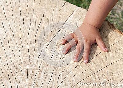 Hand on wood texture