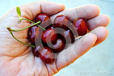 Handful of cherry