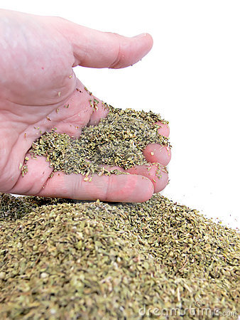 Handful of oregano