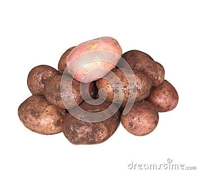 Handful of young potato.