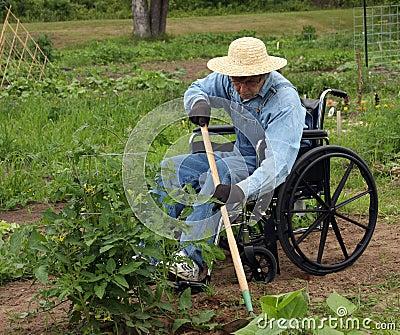 Handicapped farmer