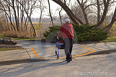 Handicapped Street Crossing