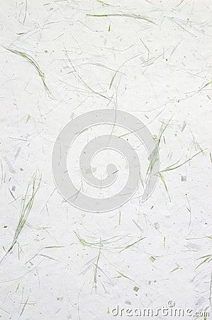 Handmade Grass Paper
