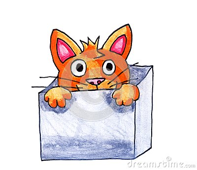 Cat in a Box Cartoon Illustration