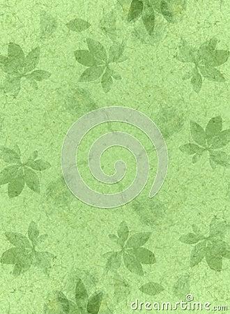 Handmade Paper Texture Green