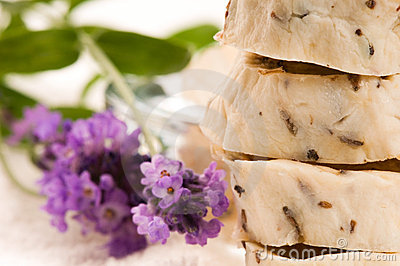 Handmade Soap With Fresh Lavender Flowers