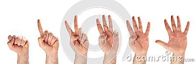 Hands - 1-2-3-4-5