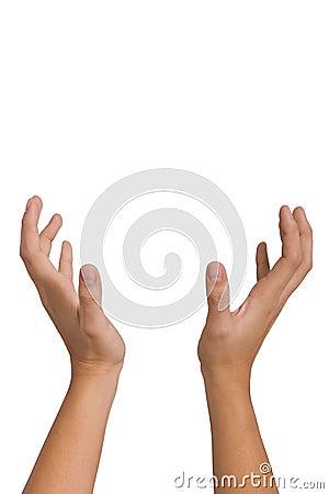 Free Hands Stock Photos - 2941853