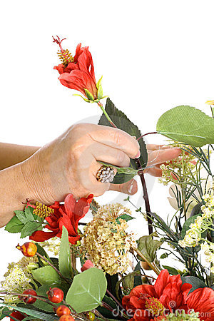 Hands arranging flowers