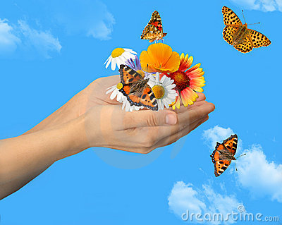 Hands with butterflies