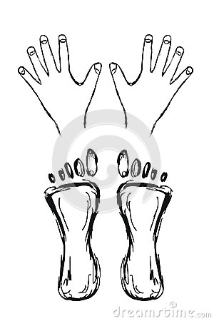 Hands and feet illustration