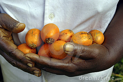 Hands full of fruits